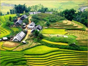 Explore The Northern Vietnam Tour